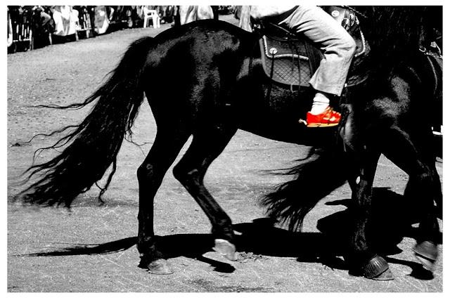 feria del caballo moeche, feria cabalo, escapadas a vía láctea