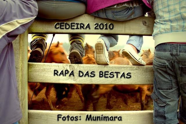 fotos rapa das bestas en cedeira, munimara www.munimara.com