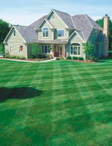 For Expert Lawn Care - Contact Lawn Doctor