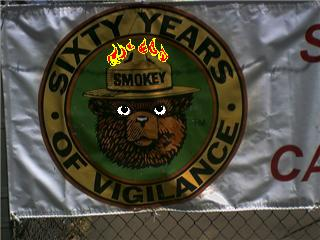 Hey Smokey, vigilance doesn't clean up the forest or put out fires!