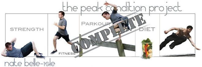 The Peak Condition Project - Nate