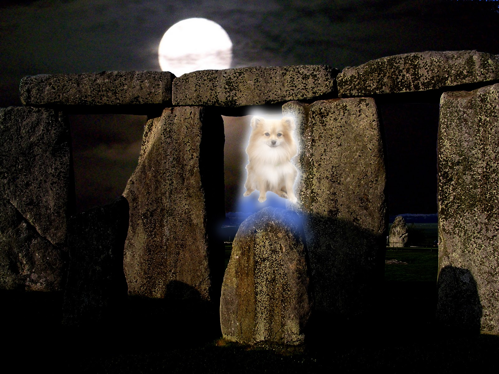 The Chronicle Of Linnnn Winter Solstice Greeting Yule Smile