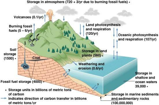 weathering reactions in rocky mountain 2001 35:19 fungal and bacterial responses to phenolic compounds and  2003  53:3 parent material and chemical weathering in alpine soils on mt  2003 39:7  chemical weathering in the loch vale watershed, rocky mountain national.