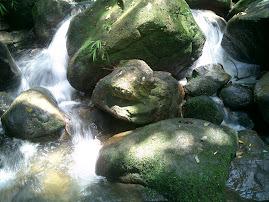 piedras en el camino