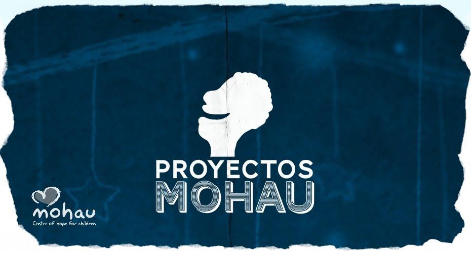 PROYECTOS MOHAU 2010-2011