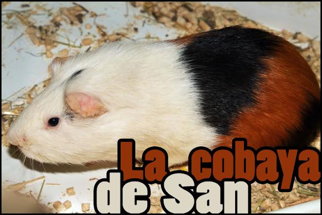 La Cobaya de San