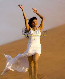 Asin in Ghajini