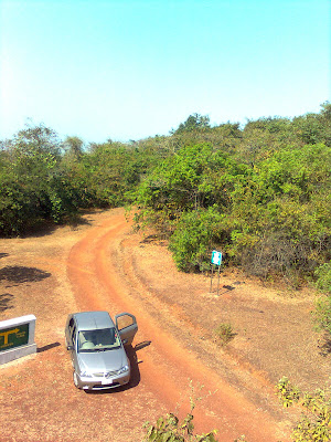 view from observation tower at Phansad Wildlife Sanctuary