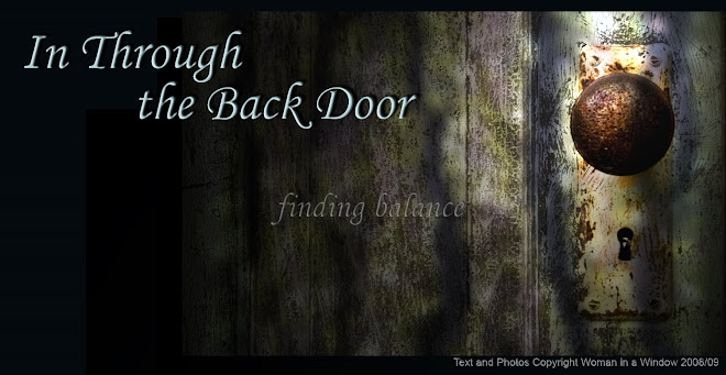 In Through The Back Door