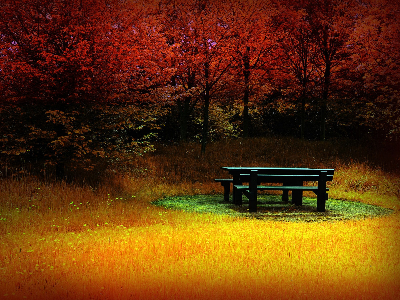 HD Autumn Fall Wallpapers | HD Nature Wallpapers