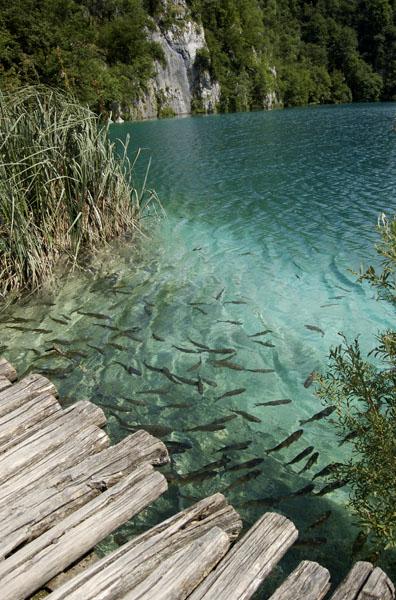 25.+Plitvice+Lakes%252C+Danau+Terindah+di+Eropa Plitvice Lakes, Danau Terindah di Eropa