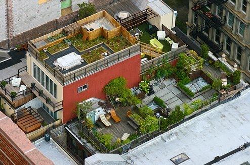 arquitectura de casas: terraza jardín sobre edificios.