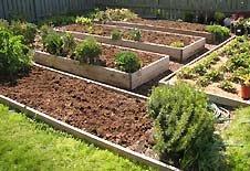 Huerta en jardín