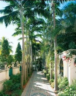 Pasillo de las palmeras