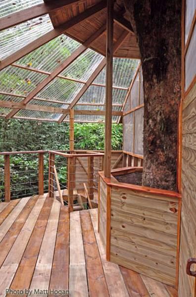 Un nivel de madera que sirve de mirador en la altura