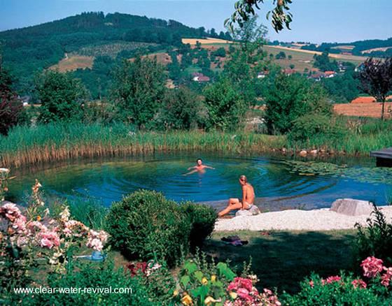 Modelo de piscina natural