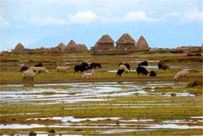 Casas cónicas de adobe putucus en el Altiplano