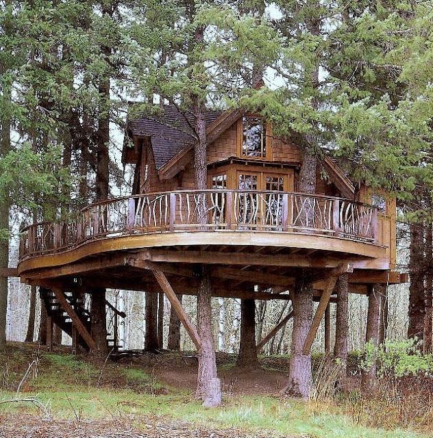 Casa cabaña de madera con deck sobre troncos de árboles vivos