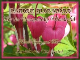 Random Blog Award