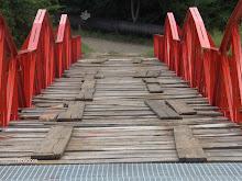 Reparacion del puente Parque Burro Negro