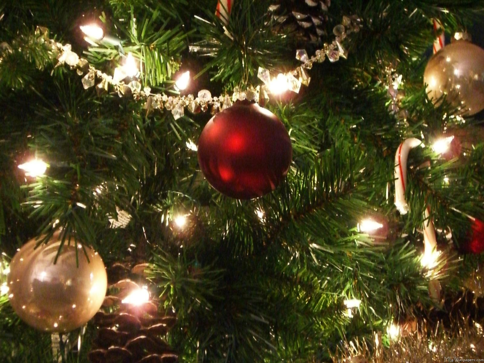 Christmas Tree Wallpaper Hd Hd Wallpaper