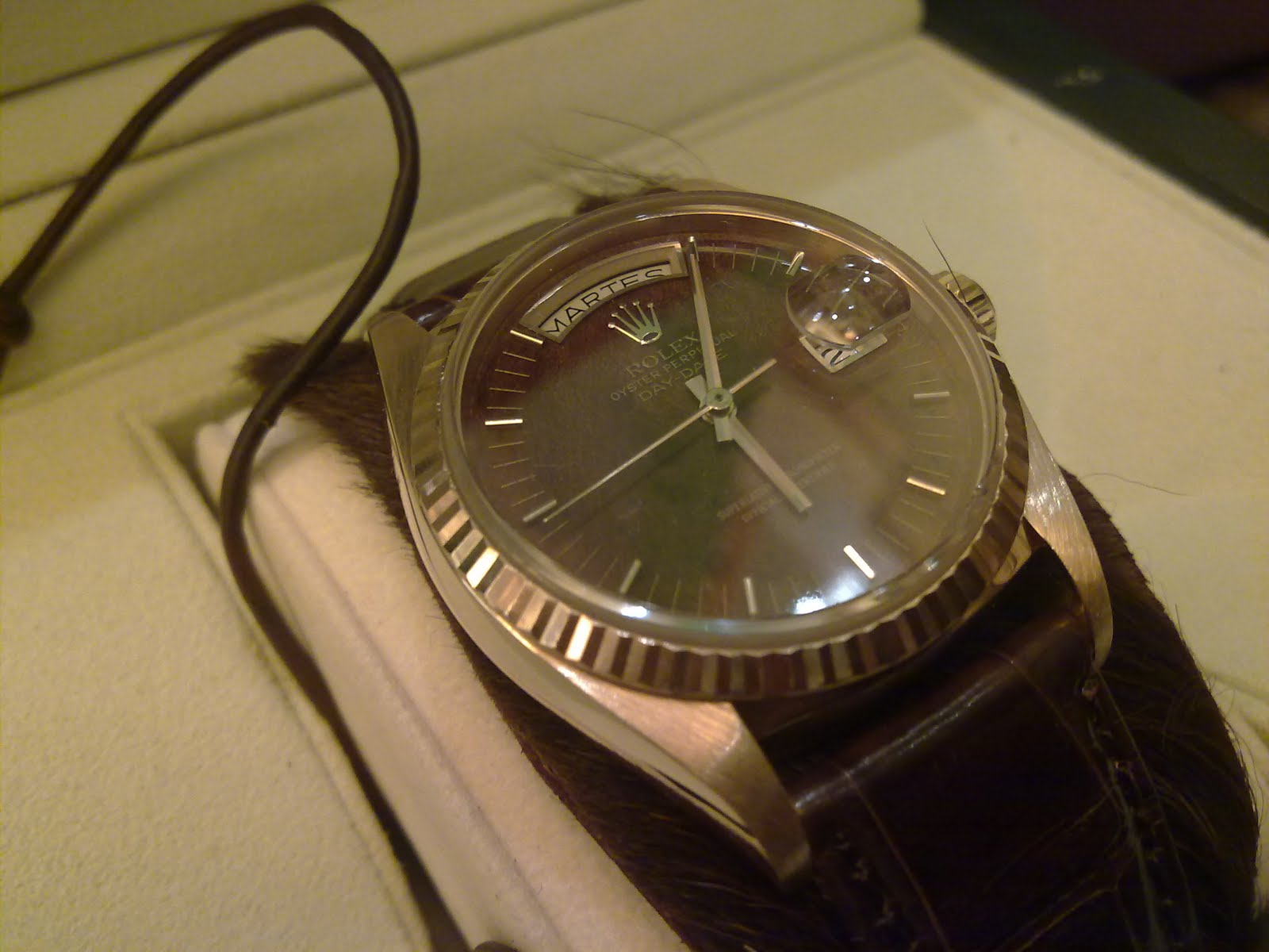 hong kong fever 香港勞友 the best looking rolex oyster