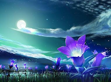 Sueños de Luna Llena