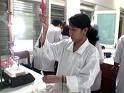 Lowongan Kerja Bidan, Guru dan Analis di Sampit