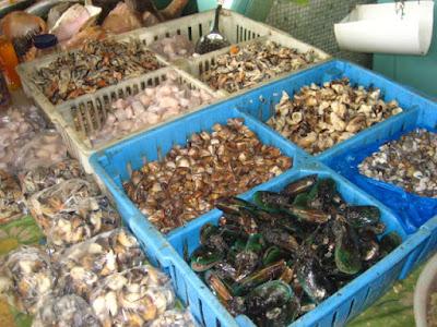 9:40 AM Parte final de la compra: Necesitamos Caracoles de mar y vieiras