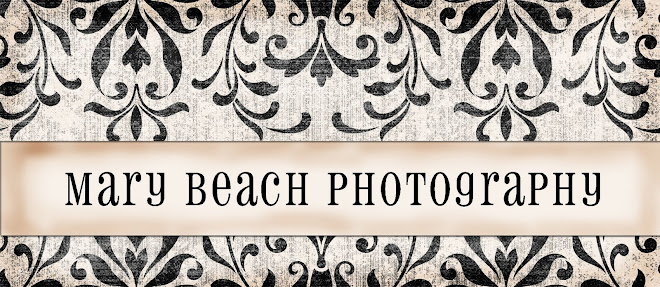Mary Beach Photography