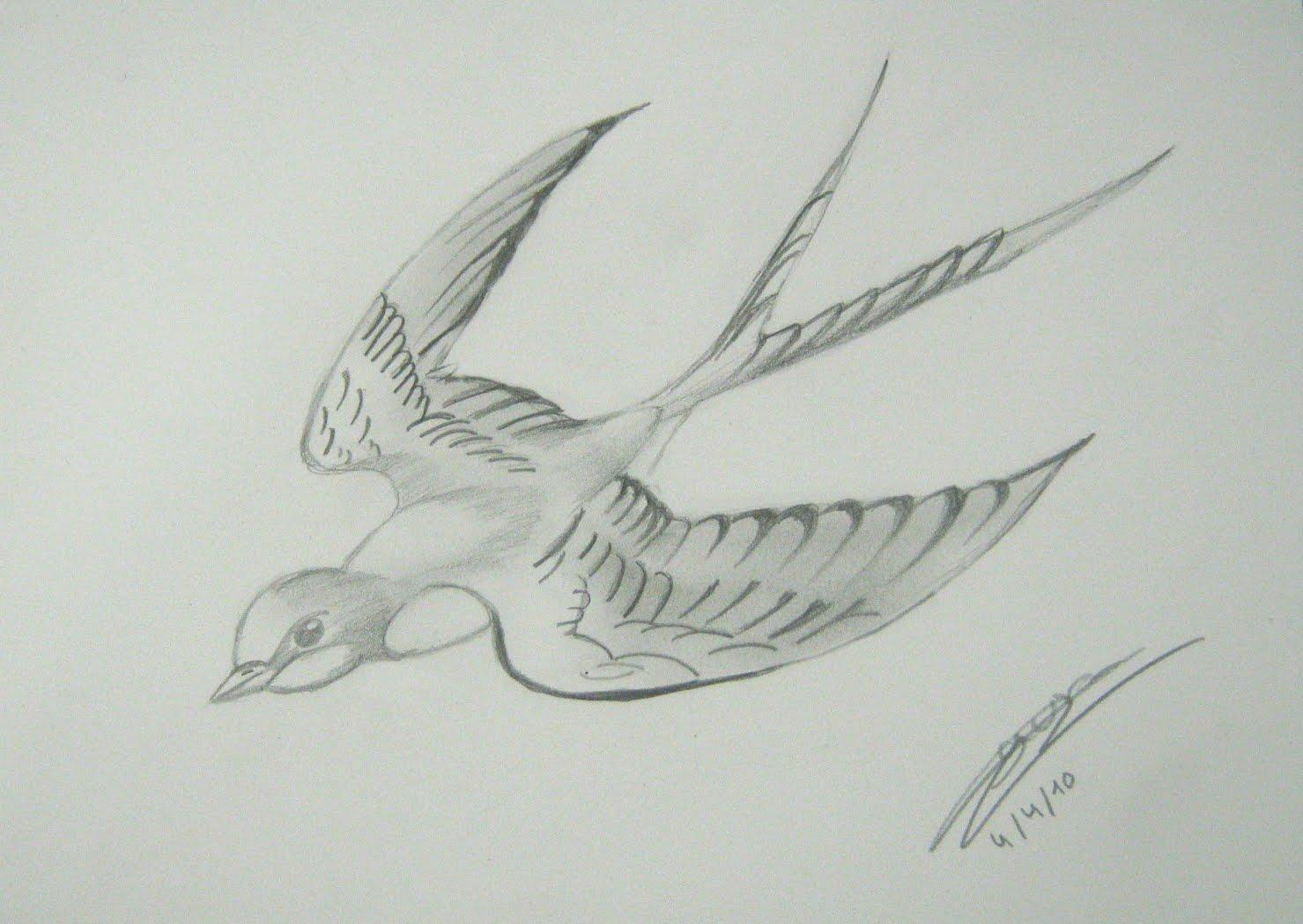 Pintasomnis MENUDOS Clases de Dibujo DIBUJANDO AVES