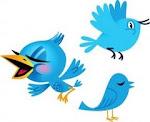 oi! estamos no twitter!