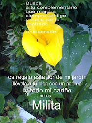 REGALO  DE  MILITA