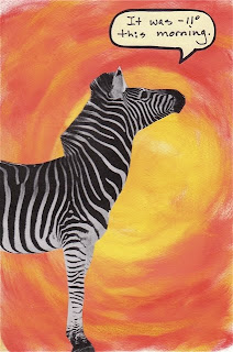 zebra on a colored background