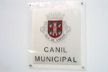 Canil Municipal de Vinhais