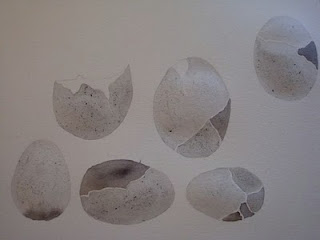 eggs, illustration, sumi ink, mizu designs
