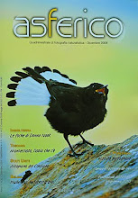 Capa- Revista Asferico