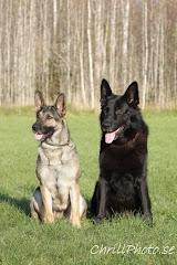 Kira & Hassan