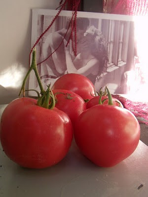 Tomatoes with a passionate kiss