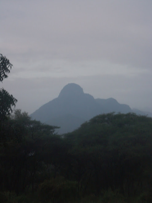 Mt. Koh from Marich Pass Field Studies Centre