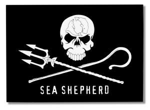 who is sea shepherd? Click Below