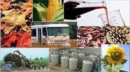 los distintos bioconbustibles