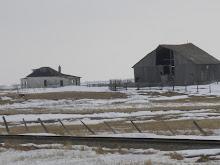 A farm they both claim
