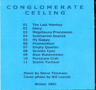 STEVE THOMSEN-CONGLOMERATE CEILING, CDR, 2001, USA