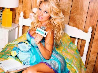 Pamela Anderson-VIP,Home Improvement, Baywatch