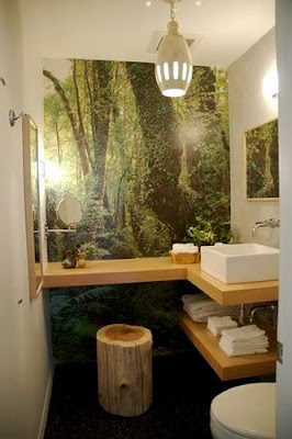 Home Bathroom Design
