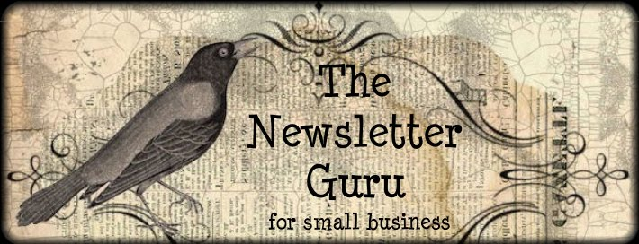 The Newsletter Guru for Small Business