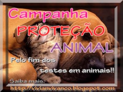 Campanha PROTEÇÃO ANIMAL!