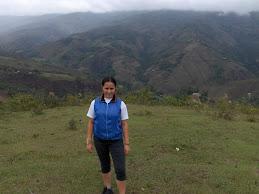 Desde Mérida- Estado Mérida- Venezuela