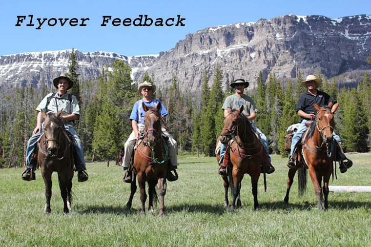 Fly Over Feedback